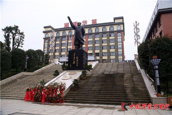 湖南华莱向毛主席铜像敬献花篮仪式 纪念伟人诞辰122周年