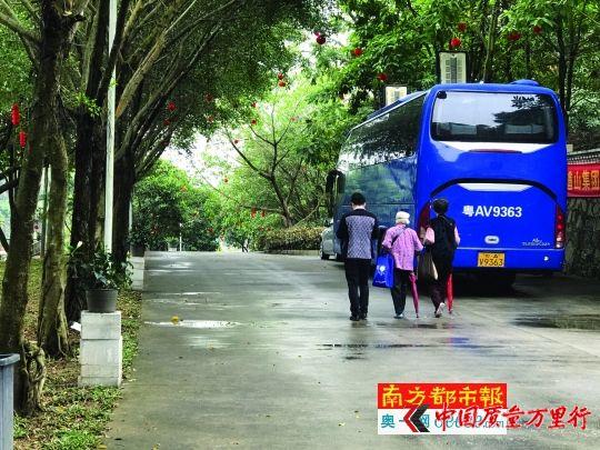 几乎每天都有老人被组织到九龙道山庄园游玩。