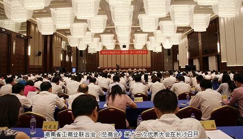 绿之韵胡国安成功当选湖南省第十二届工商联副会长