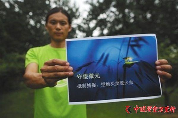 北京一景区投放十几万只萤火虫 来源遭环保组织质疑
