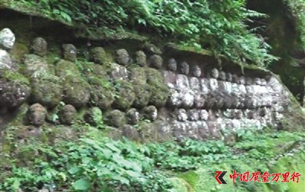 乐山摩崖石刻10颗明代佛头被盗 乡野文物为何屡遭窃