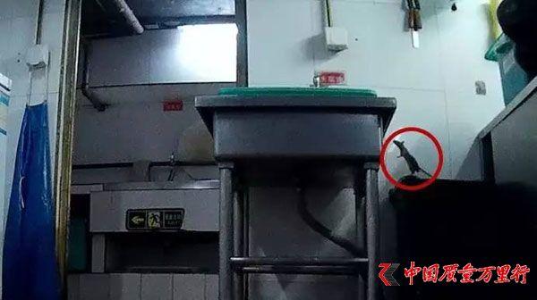 记者卧底北京两家海底捞:火锅漏勺掏下水道