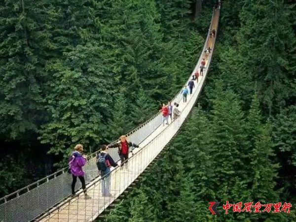 世界上很有名气的七座危险桥,人类的创造力真是无穷无尽啊