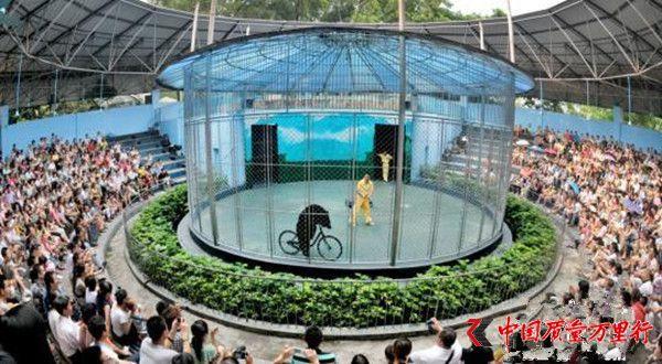 广州动物园回应马戏团拒关停:将联系工商部门