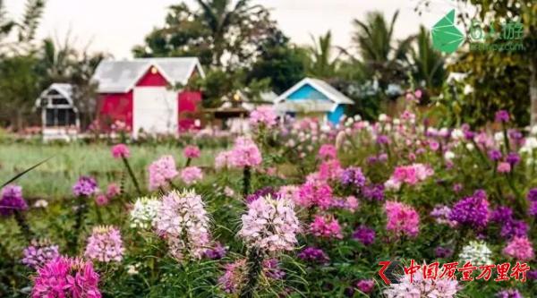 细数泰国10个小众天堂般的景点,带你领略不一样的泰美丽