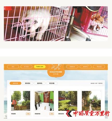 国庆长假宠物寄养一笼难求 寄养费最高一天900元