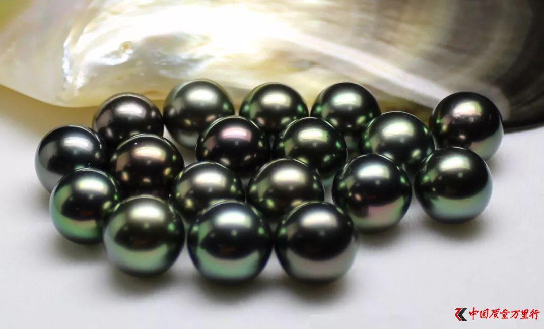 ▲黑珍珠长这样