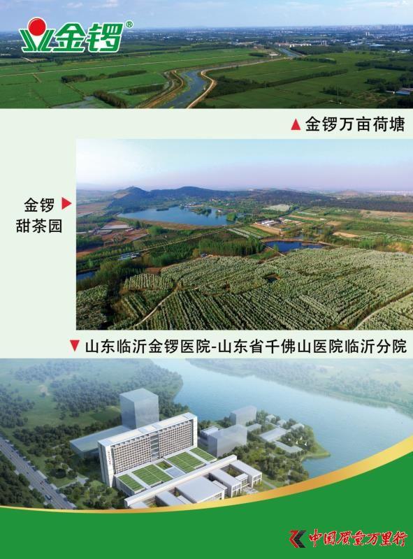 """金锣:""""新六产""""引领兰山区产业融合发展 创品牌农产品"""