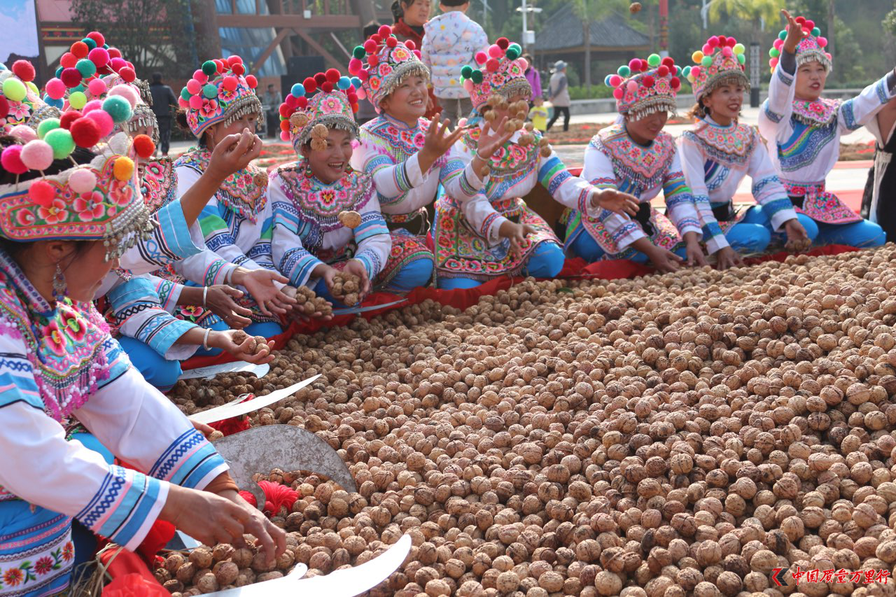 拼多多9小时超去年双十一全国贫困县产生1200万个上行农产品订单