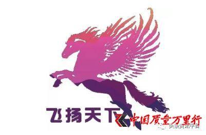 """网红云商旗下公司""""飞扬天下""""借360兜售原始期权股"""