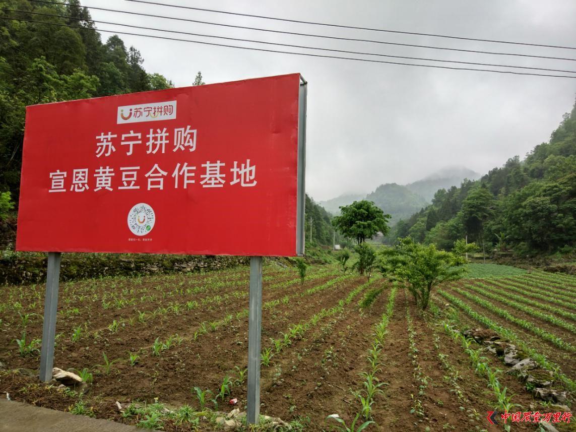 """""""两会""""召开在即 苏宁张近东建言:发展C2M基地"""