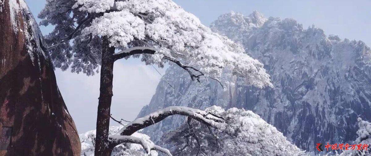 大雪过后的黄山,是一个被冰雪包裹的艺术品