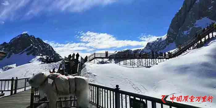 """黑龙江漠河北极村:找""""冻""""跨年度假受热捧"""