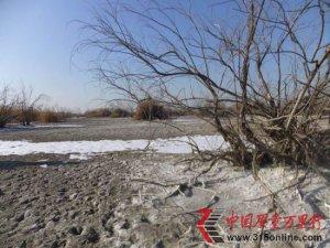 内蒙古托克托多个村庄因污水污染土地无法耕种