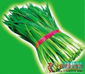 南京菜贩给韭菜喷蓝矾保鲜 过量摄入致肾衰竭