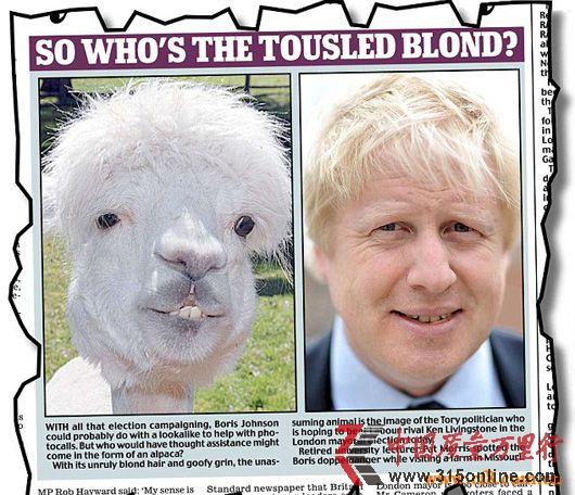 组图:政客与动物表情大对比