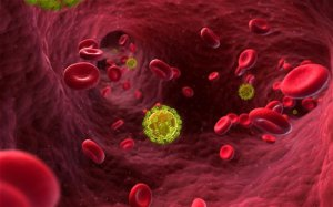 科学家可能很快就会找到对付艾滋病病毒方法